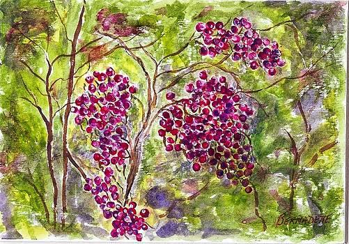 Bernie's Berries by Bernadette Amedee