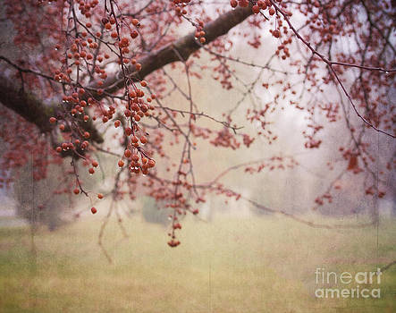 Berry Tree by Pam  Holdsworth