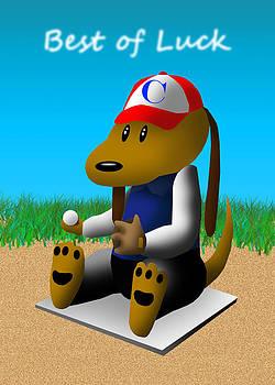 Jeanette K - Best of Luck Baseball Dog