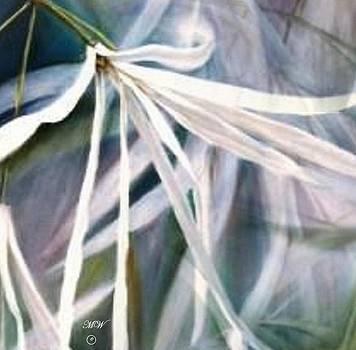 Beth's Flower by Melodye Whitaker