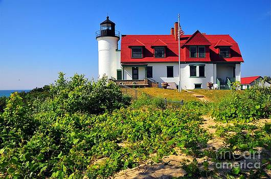 Terri Gostola - Betsie Point Lighthouse