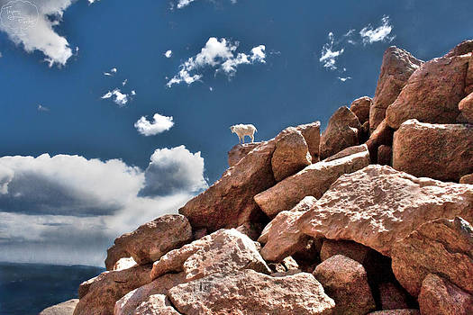 Between a Rock and a Hard Place by Tejas Prints