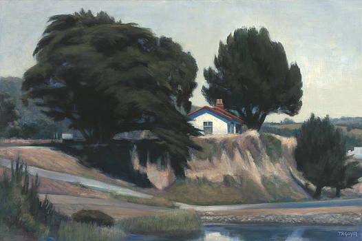 Between Cypress and Sea by Terry Guyer
