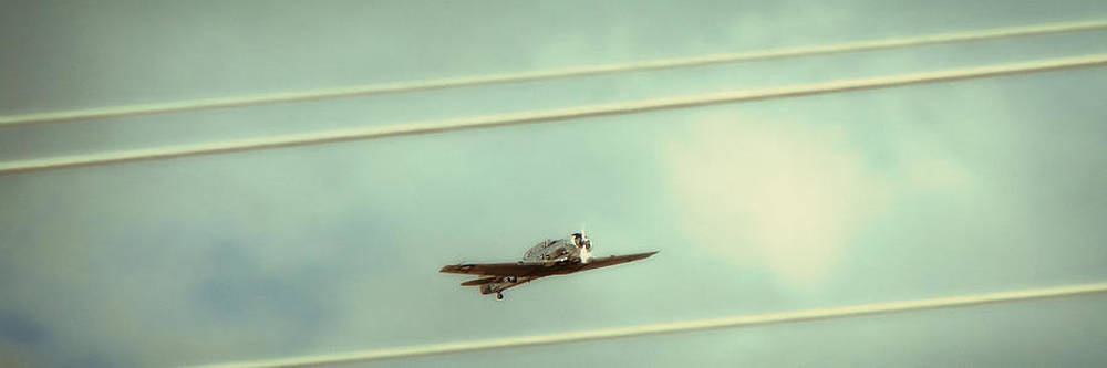 TONY GRIDER - Between the Lines Polaroid Edition