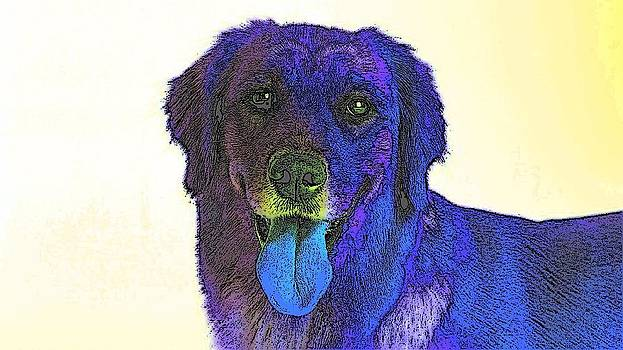 Beyond Purple by Kathy Budd