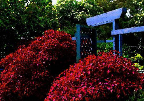 James Temple - Beyond The Garden Gate