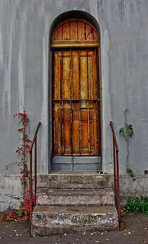 Beyond This Door by Mamie Thornbrue