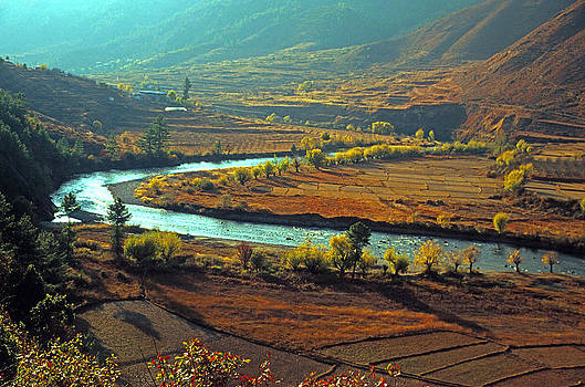 Dennis Cox - Bhutan river valley