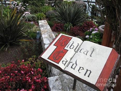 Biblical Garden by James B Toy