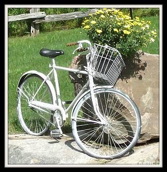 Gail Matthews - Bicycle Basket Bouquet