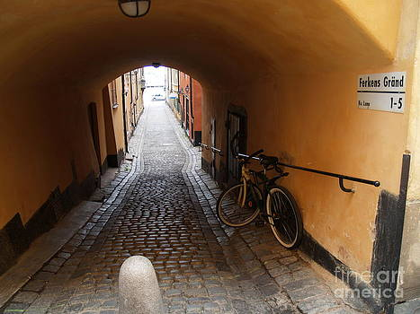 Bicycle in Tunnel by Robin Maria Pedrero