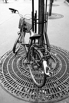 Bicycle On The Streets of Paris by Damian Hevia