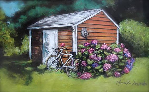 Bicycle Resting on Shed by Melinda Saminski