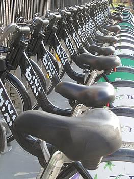 Alfred Ng - bicycle seats