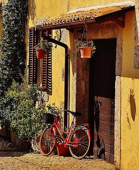 Bicycle Under the Porch by Dany Lison