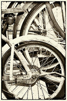 Bicycles by Jeanne Hoadley