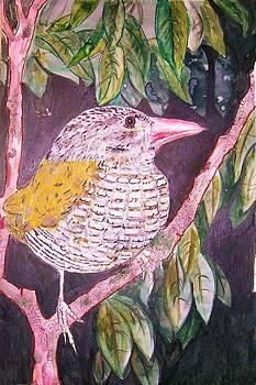 Big Bird by Linda Vaughon