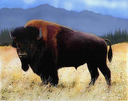 Big Bison by Robert Foster