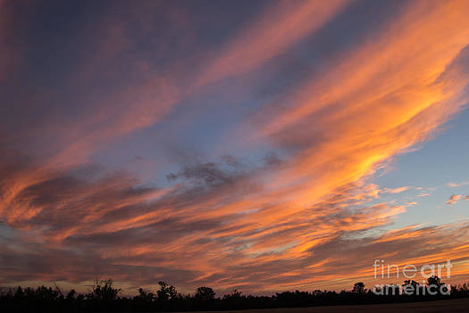 Alanna DPhoto - Big Bold Sunset
