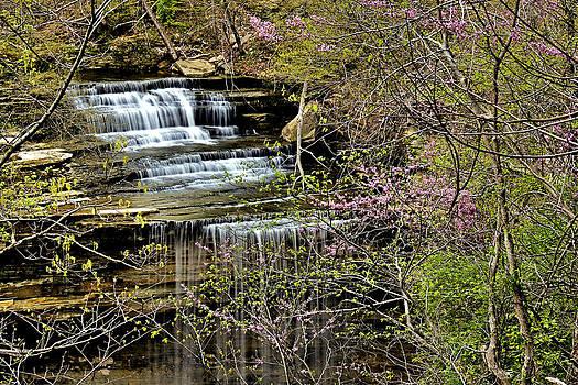 Matthew Winn - Big Clifty Falls