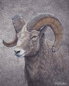 Big Horn Ram by Mike Stinnett