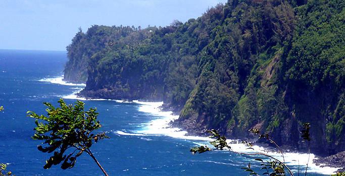 Big Island North Coast by Mark L Watson