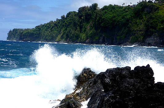 Big Island Shore IV by Mark L Watson