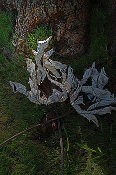 Big Leaves by Bob Whitt