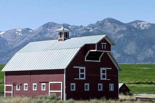 Big Red Barn by Susan Hamilton
