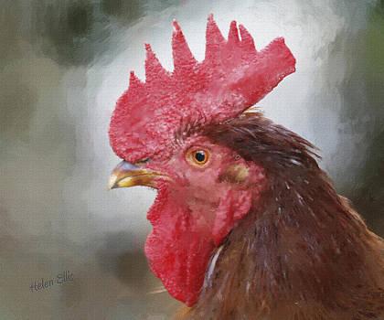 Big Red by Helen Ellis