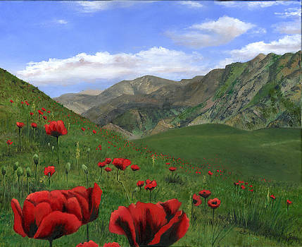 Big Red Mountain Poppies by Cecilia Brendel