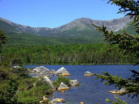 Gene Cyr - Big Rock View 2