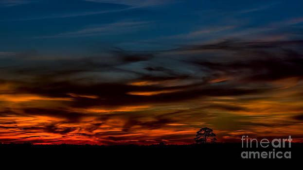Dave Bosse - Big Sky After Sunset