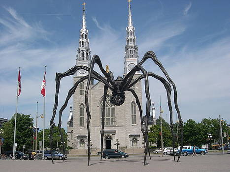 Alfred Ng - Big Spider in Ottawa