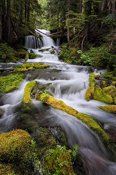 Big Spring Creek Falls  by Brian Bonham