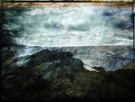 Big Sur by Anna Miller