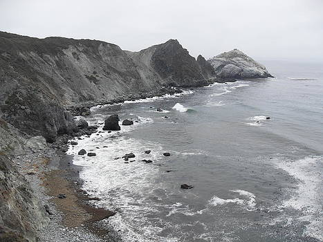 Big Sur CA by Laura Young