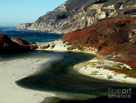 Big Sur Inlet by Eva Kato