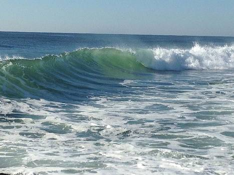 Big Surf by Shannon OBrien