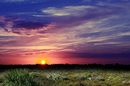 Big Texas Sky by Laura Fasulo