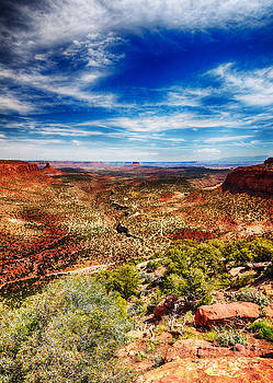 Big Water Canyon Maze District Canyonlands National Park by Scotts Scapes