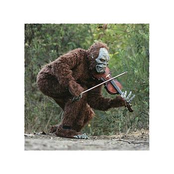 Bigfoot Viola by Keith May