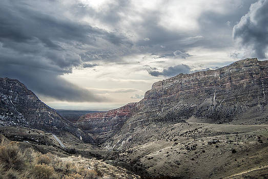 Bighorn View by Stephanie Thomson