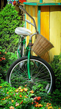 Bike in Garden by Dulce Levitz