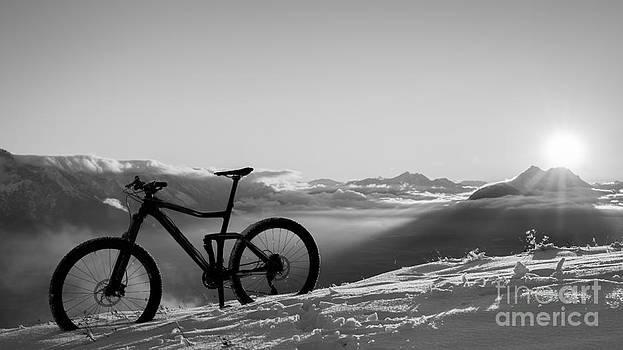 Bike by Maurizio Bacciarini