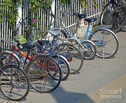Bike Row by Louise Peardon