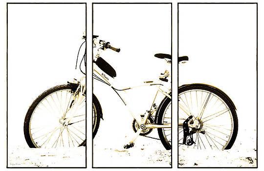 Bike. The triptych by Sergey Kireev