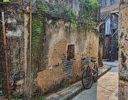 Bikes by Karen Walzer