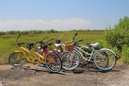 Bikes by Renee Braun