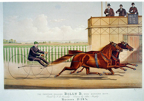 Billy D by Currier and Ives